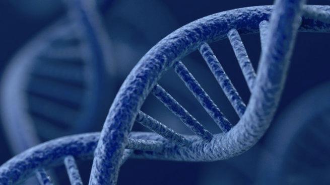 Explorando el ADN de las organizaciones 2.0 ¿Cambiar un poco para cambiarlo todo?