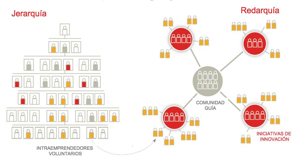 Organizaciones Duales: Redarquía y Jerarquía
